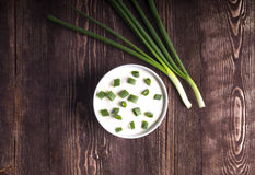 Sour creame. Round dish of homemade tartar sauce. Sour cream wit Royalty Free Stock Images