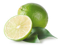 Sour green lime Stock Photography