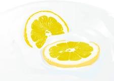 Sour lemon. Vector illustration. Fresh lemon in cream Royalty Free Stock Photos
