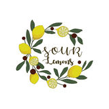 Sour lemons hand drawn. Juicy yellow lemons with leaves Stock Photography