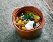Sour Russian soup Stock Photos