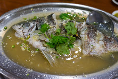Sour and spicy steamed seafish Stock Images