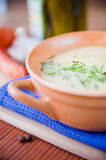 Sour and tasty cucumber soup Royalty Free Stock Photos