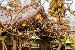 Source à Tokyo photos stock