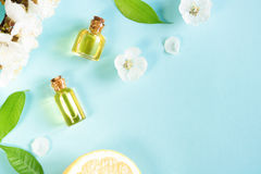 Source aromatherapy images libres de droits