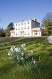 Source au Greenway d'Agatha Christie au Devon Photo libre de droits