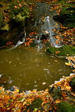 Source d'automne Photographie stock