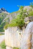 Source d'eau de montagne Image stock