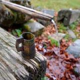 Source d'eau de source entrant dans la forêt photographie stock