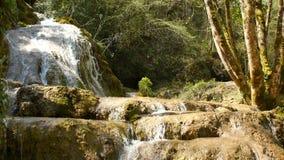 Source d'eau pure de la forêt 4K - 7 de montagne banque de vidéos