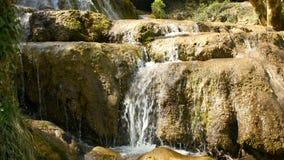 Source d'eau pure de la forêt 4K - 8 de montagne banque de vidéos