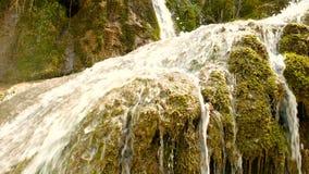 Source d'eau pure de la forêt 4K - 12 de montagne banque de vidéos