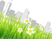 Source dans la ville, fleurs Photographie stock libre de droits