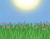 source de fleurs Image libre de droits
