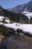 source de fleuve de montagne Photographie stock libre de droits