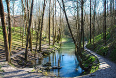 Source de l'Èbre de rivière Photo libre de droits