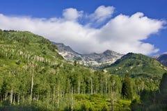 Source de montagne Photographie stock