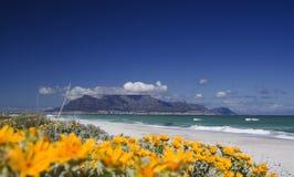 Source de montagne de Tableau Image libre de droits