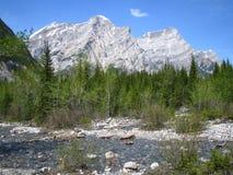 Source de montagne rocheuse Image stock
