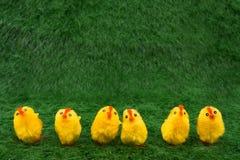 source de poulets image stock