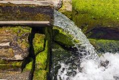 Source de ressort d'eau propre Photographie stock
