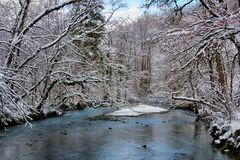 Source du Lison in winter Royalty Free Stock Images