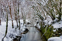 Source du Lison in winter Royalty Free Stock Photos