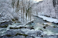 Source du Lison in winter Stock Images