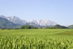 Source en Autriche Image libre de droits