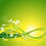 Source et fond floraux d'été Image stock
