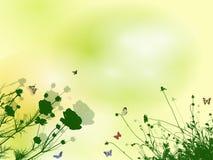 Source florale Image libre de droits