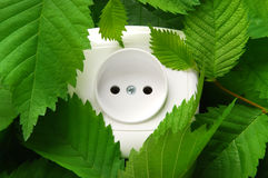 Source of green energy. White outlet on among green leaves royalty free stock photography