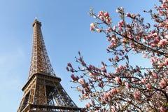 Source par Tour Eiffel image stock