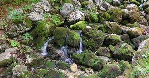 Source of pure fresh water. In the mountains Stock Image