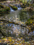 Source of the river Cuervo, Cuenca, Castilla la Mancha, Spain Royalty Free Stock Photos