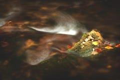 Source/rivière de montagne pendant l'automne photographie stock libre de droits