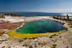 Source thermale colorée près de lac Yellowstone Photographie stock libre de droits