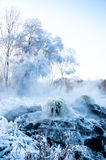 Source thermale de geyser Photo libre de droits