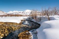 Source thermale de parc national de Nalichevo Image libre de droits