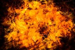 Source thermale Yellowstane de l'eau sulfurique et acide Photo stock