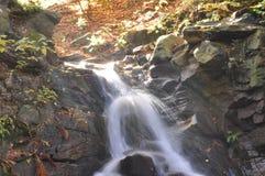 Source Vistula. Crystalline stream, clean water Royalty Free Stock Image