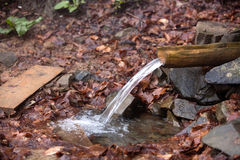 Source of water among stones and fallen leaves. Pure water among the stones and fallen leaves flows along a wooden trench Royalty Free Stock Photos