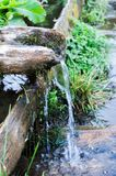 Source of water in the wilderness. Thirst quenching. Dehydration. Vertical shot. Source of water in the wilderness. Thirst quenching. Dehydration Royalty Free Stock Photos