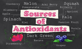 Sources of Antioxidants. With Chalk on Blackboard Royalty Free Stock Image