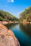 Sources de forêt et d'eau Photo libre de droits