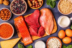 Sources of healthy protein - meat, fish, dairy products. Nuts, legumes, and grains stock images