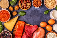 Sources of healthy protein - meat, fish, dairy products. Nuts, legumes, and grains royalty free stock photography
