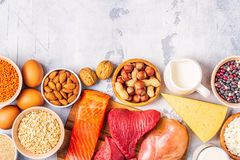 Sources of healthy protein - meat, fish, dairy products. Nuts, legumes, and grains stock photo