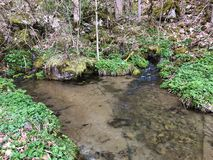 Sources next to the karst spring and waterfall Tschuder under the Ebenalp mountain range and in the Appenzellerland region stock photography