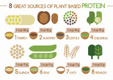 8 sources of plant based protein Illustrator Stock Image